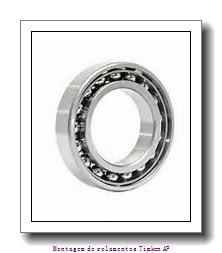 HM120848 -90011         Conjuntos de rolamentos integrados AP