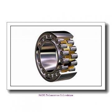 30 mm x 90 mm x 24 mm  NSK M30-6 Rolamentos cilíndricos